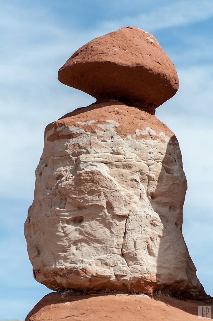Champignon de pierre